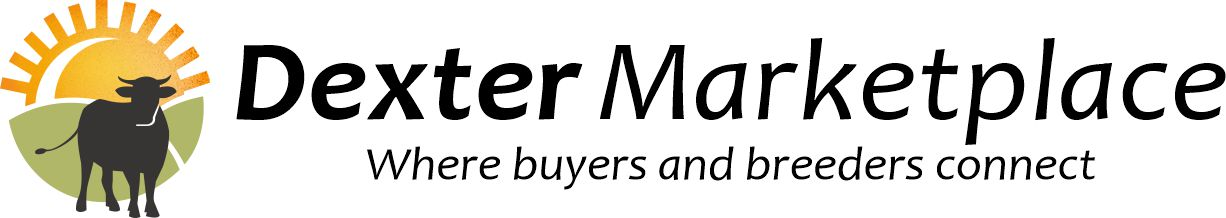 The Dexter Marketplace - Where Buyers & Dexter Breeders Connect